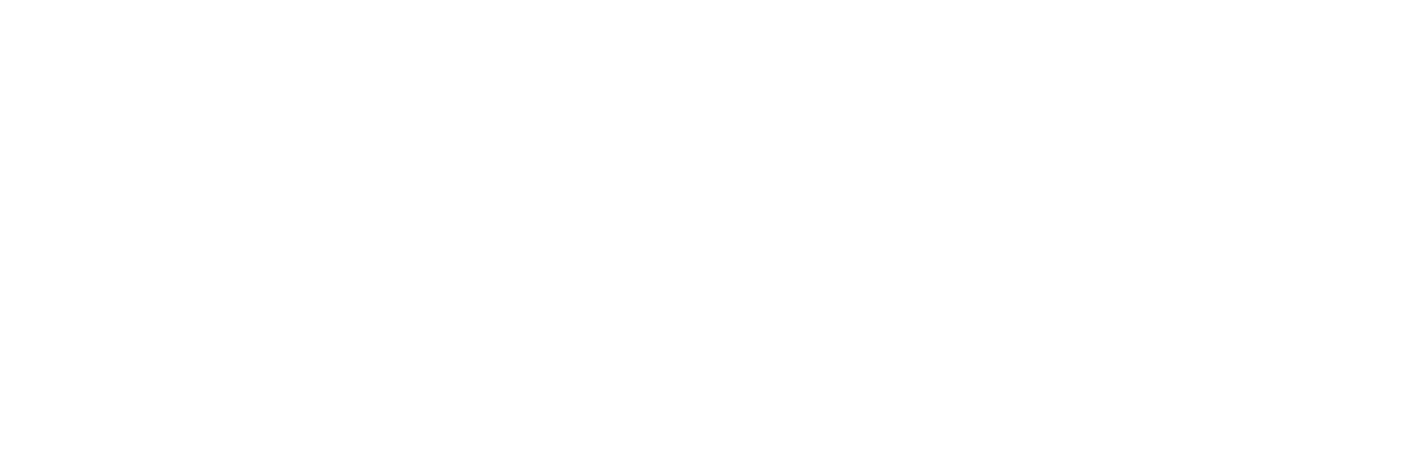 Belle-and-Wilde-Gluten-Free-Bakery-logo
